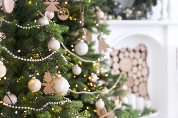 Unsere Praxen sind am 24. und 31. Dezember geschlossen
